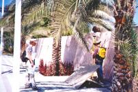 Topografische Vermessung von Bewässerungsanlagen in Abu Dhabi